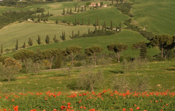 Der Franziskusweg in der Toskana