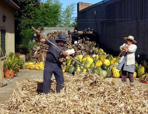 Die Garageneinfahrt wird zur landwirtschaftlichen Arbeitsfläche. Hier ist fast jeder nebenher Landwirt.