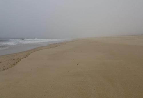 Hier sollte eigentlich endlich Praia da Tocha zu sehen sein.