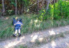 Pilgerrast im Wald – so schön