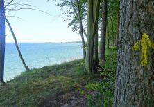 Der Gelbe Pfeil weist den Weg an der Ostsee entlang.