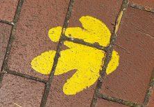 Wo zeigt dieser gelbe Pfeil nur hin?