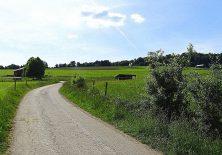 Jakobsweg über die Felder