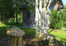 Überraschung: Eine Jakobsmuschel mitten im Wald